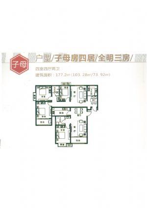 子母-四室四厅二卫一厨-户型图