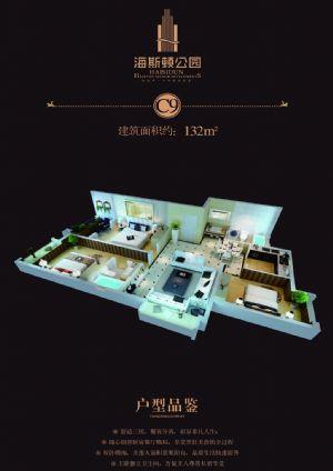 C9户型-三室二厅二卫一厨-户型图