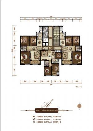 A3户型-三室二厅一卫一厨-户型图