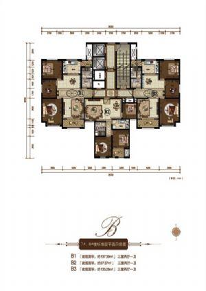 B3户型-三室二厅一卫一厨-户型图