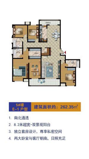 E-1户型-室厅卫厨-户型图