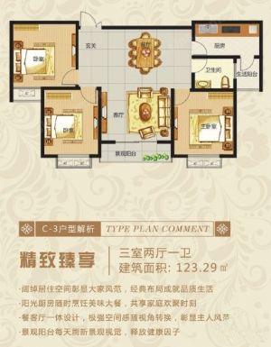 三室C-3-三室二厅一卫一厨-户型图