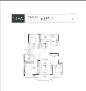 125-A-三室二厅二卫一厨-户型图
