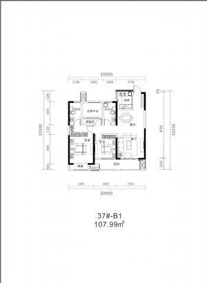 37#B1-110�O-三室二厅二卫一厨-户型图