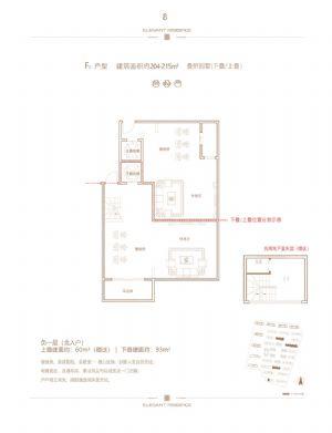 F2户型负一层北入户-室厅卫厨-户型图