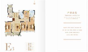E3户型-四室二厅二卫一厨-户型图