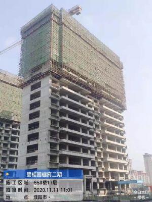 碧桂园樾府2020年11月施工进度图