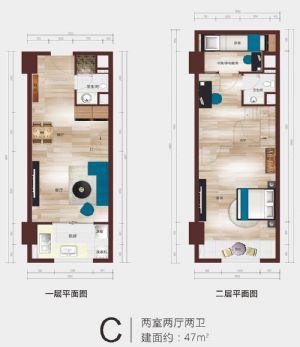 C公寓户型平面图-二室二厅二卫二厨-户型图