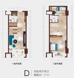 D公寓户型平面图-二室二厅二卫二厨-户型图