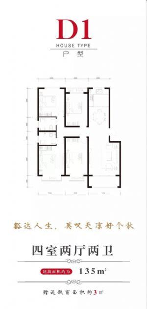 D1户型-四室二厅二卫一厨-户型图
