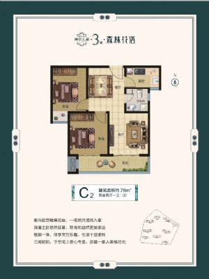 C2-二室二厅一卫厨-户型图