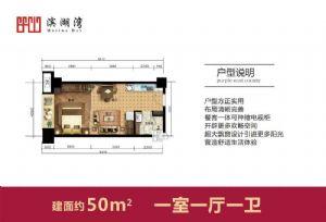 50-一室一厅一卫一厨-户型图