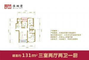131-三室二厅二卫一厨-户型图