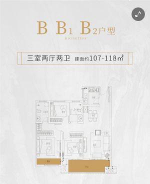 B B1 B2户型-三室二厅二卫一厨-户型图