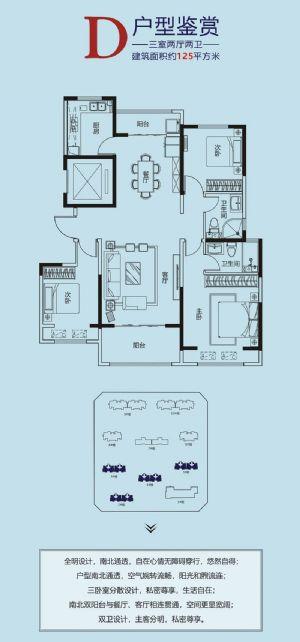 D-三室二厅二卫一厨-户型图