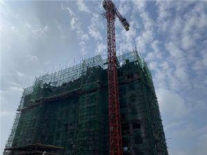 桃李春风2020年8月施工进度图