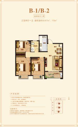 B-1户型-三室二厅一卫一厨-户型图