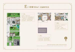 E户型-五室二厅五卫厨-户型图