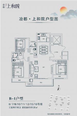 B―1户型-三室二厅二卫一厨-户型图