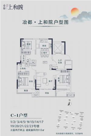 C―1户型-三室二厅二卫一厨-户型图